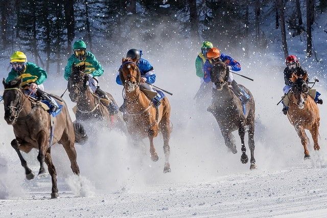 Horses Racing Competition Through Snow