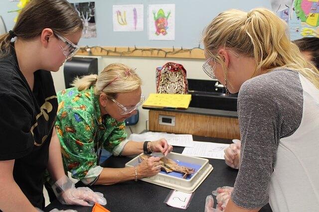 .Science Domain Classroom