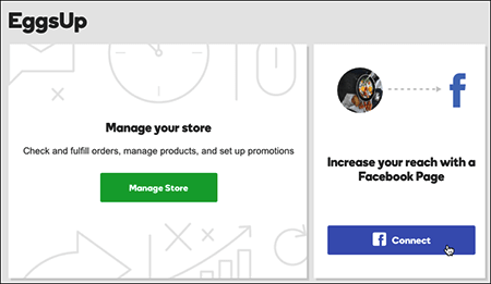 Screenshot Of GoDaddy Online Store Facebook Connection Tool