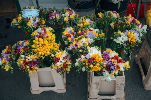 Sell Flowers Online Display