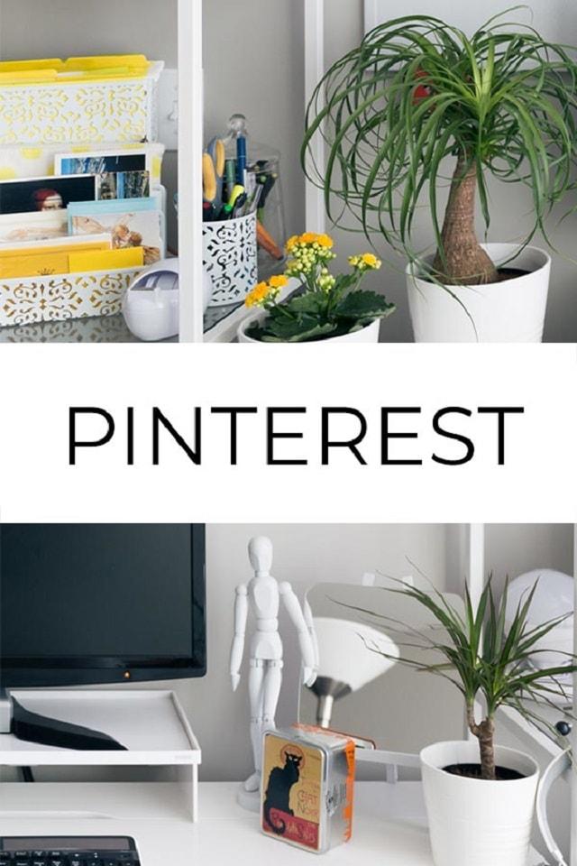 Stock Photography Pinterest