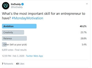 Twitter GoDaddy Polls Example