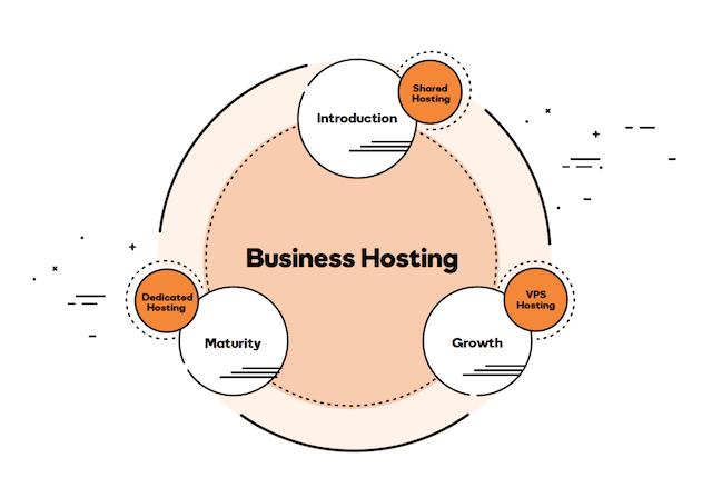 Web Hosting Profitability Business Hosting