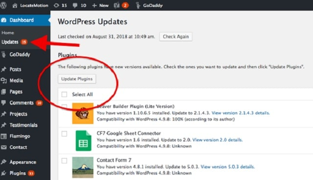 Web Page Security Select WordPress Updates