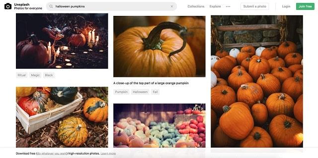 Website Banners Pumpkin