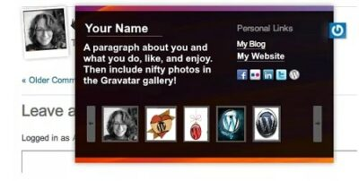 What Is A Gravatar Description