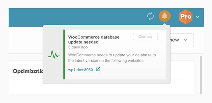 woocommerce database update