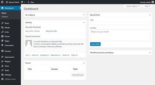 WordPress Dashboard Backend