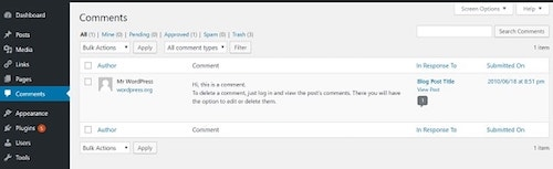 WordPress Dashboard Comments