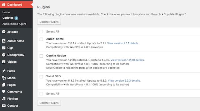 WordPress Security Updates Plugins