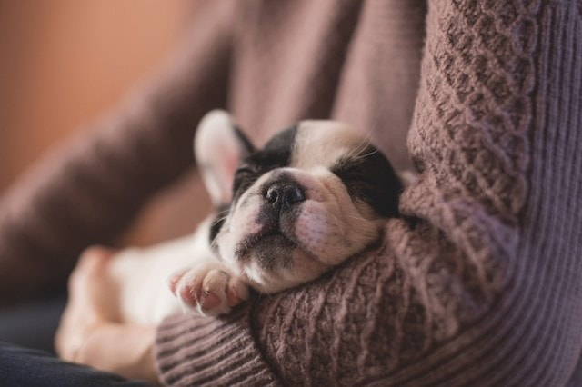 Workday Productivity Sleep
